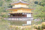 見事な金閣寺