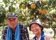 梨の木の下でハイチーズ