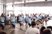 これが本場の阿波踊りです