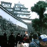 見どころ満載の姫路城