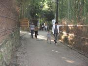 コピー嵐山を散策.jpg